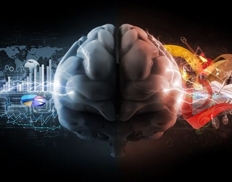 5 Capacidades da Inteligência Emocional
